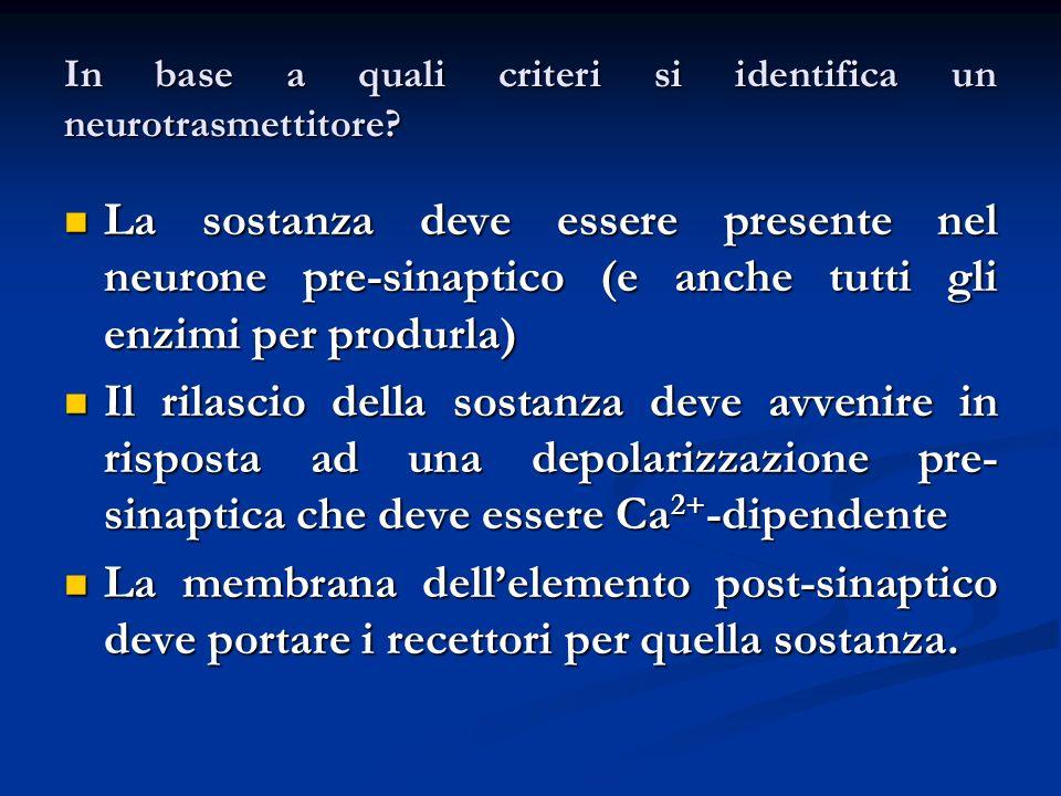 In base a quali criteri si identifica un neurotrasmettitore