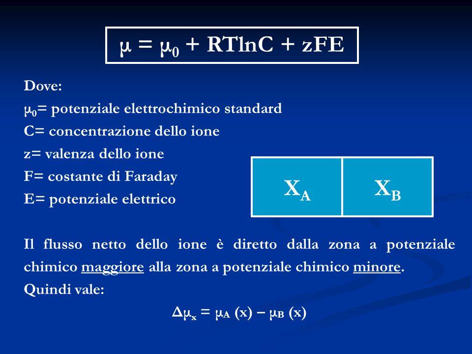 μ = μ0 + RTlnC + zFE XA XB Dove: