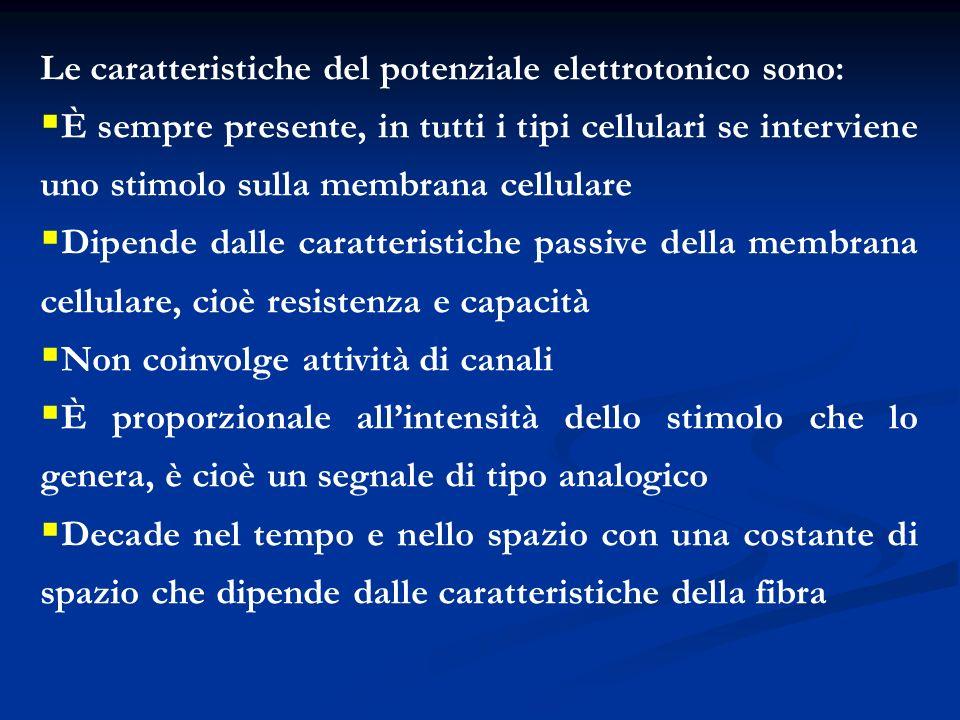 Le caratteristiche del potenziale elettrotonico sono: