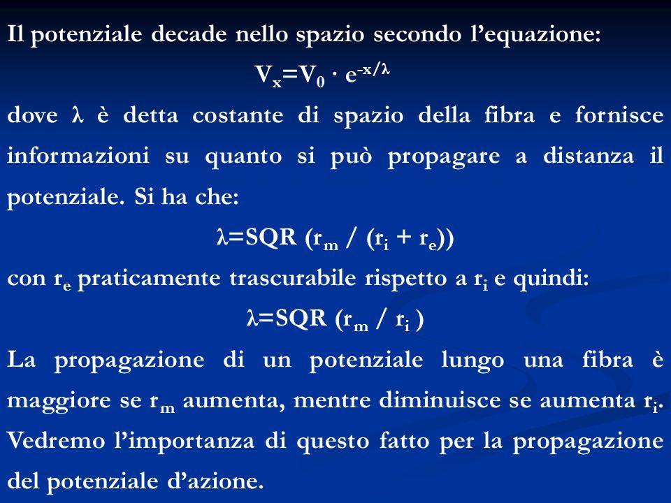 Il potenziale decade nello spazio secondo l'equazione: