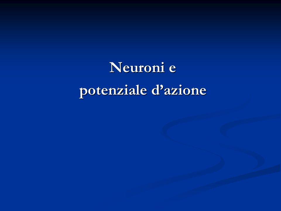 Neuroni e potenziale d'azione