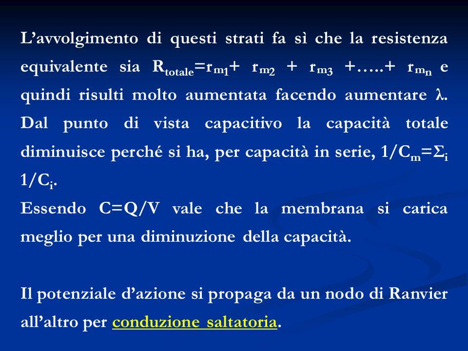 L'avvolgimento di questi strati fa sì che la resistenza equivalente sia Rtotale=rm1+ rm2 + rm3 +…..+ rmn e quindi risulti molto aumentata facendo aumentare λ. Dal punto di vista capacitivo la capacità totale diminuisce perché si ha, per capacità in serie, 1/Cm=Σi 1/Ci.