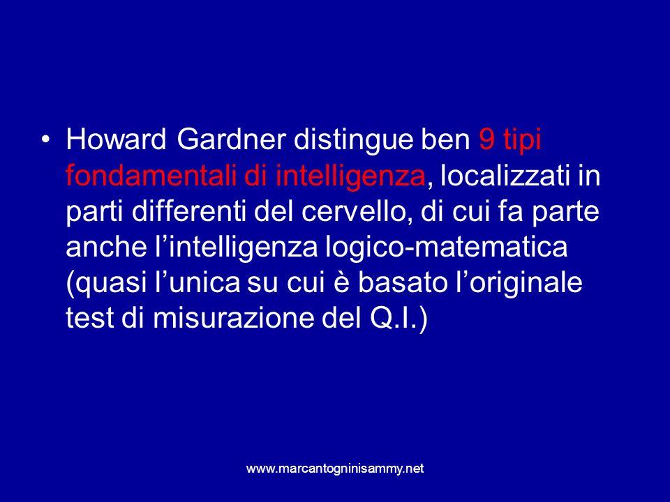Howard Gardner distingue ben 9 tipi fondamentali di intelligenza, localizzati in parti differenti del cervello, di cui fa parte anche l'intelligenza logico-matematica (quasi l'unica su cui è basato l'originale test di misurazione del Q.I.)