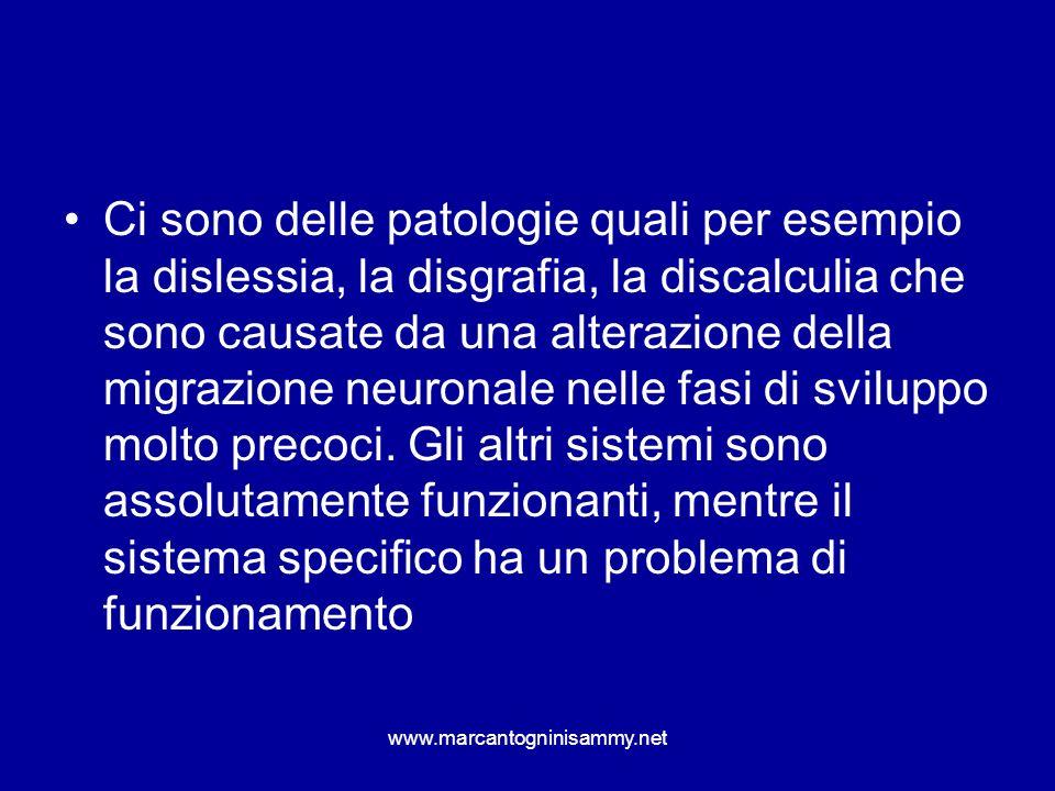 Ci sono delle patologie quali per esempio la dislessia, la disgrafia, la discalculia che sono causate da una alterazione della migrazione neuronale nelle fasi di sviluppo molto precoci. Gli altri sistemi sono assolutamente funzionanti, mentre il sistema specifico ha un problema di funzionamento