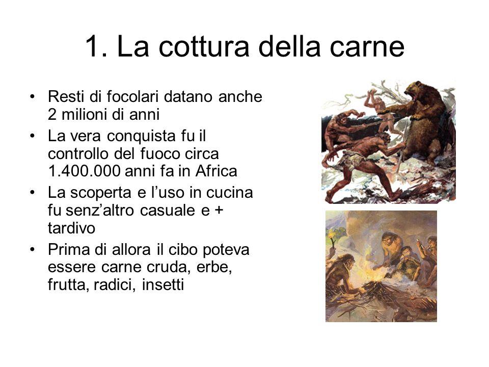 1. La cottura della carne Resti di focolari datano anche 2 milioni di anni.