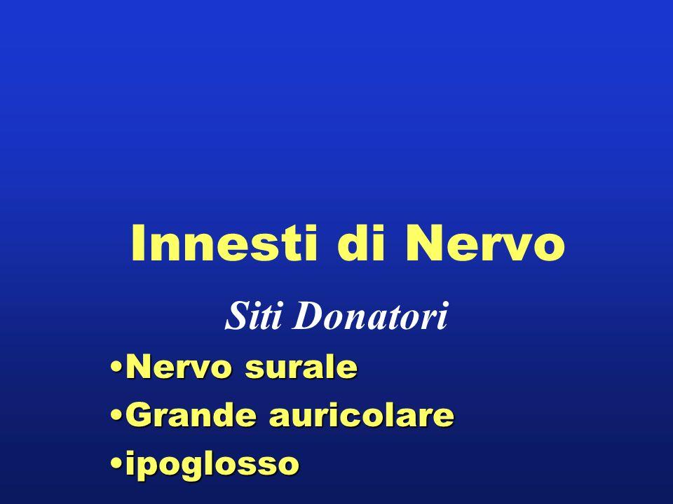 Siti Donatori Nervo surale Grande auricolare ipoglosso