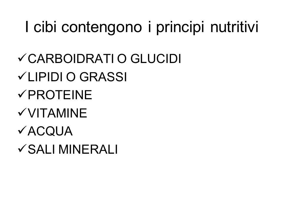 I cibi contengono i principi nutritivi