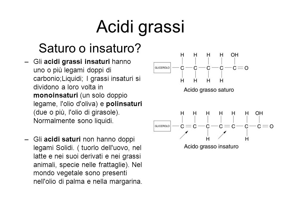 Acidi grassi Saturo o insaturo