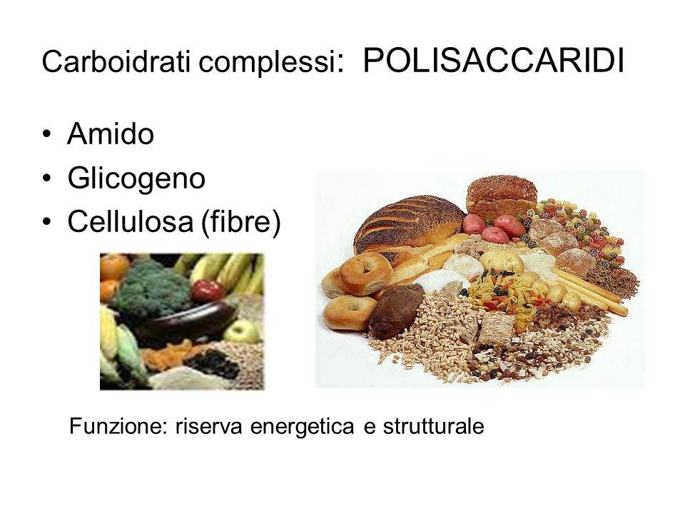 Carboidrati complessi: POLISACCARIDI