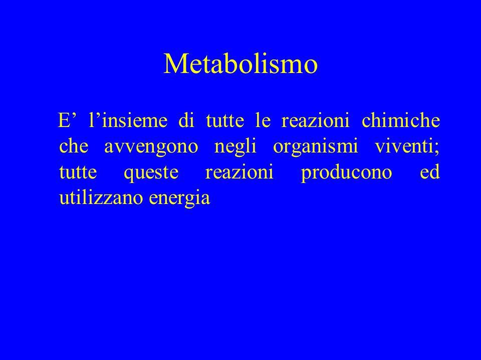 Metabolismo E' l'insieme di tutte le reazioni chimiche che avvengono negli organismi viventi; tutte queste reazioni producono ed utilizzano energia.