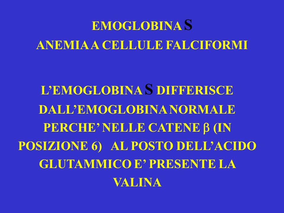 EMOGLOBINA S ANEMIA A CELLULE FALCIFORMI