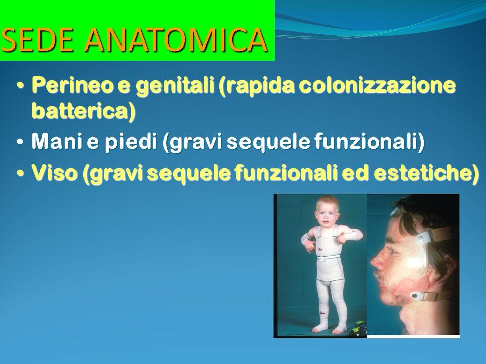 SEDE ANATOMICA Perineo e genitali (rapida colonizzazione batterica)
