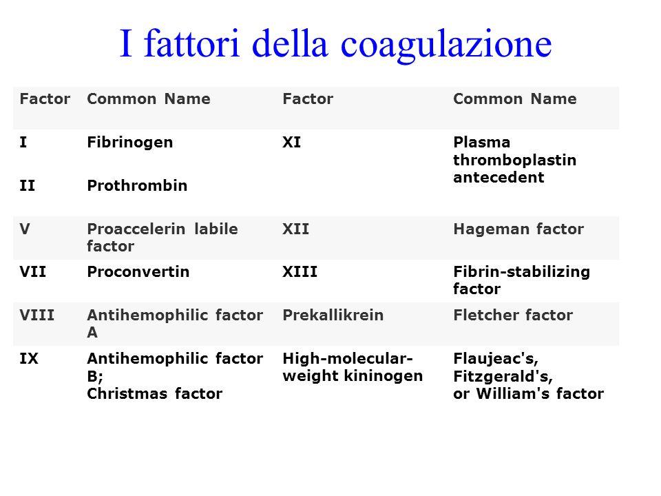 I fattori della coagulazione