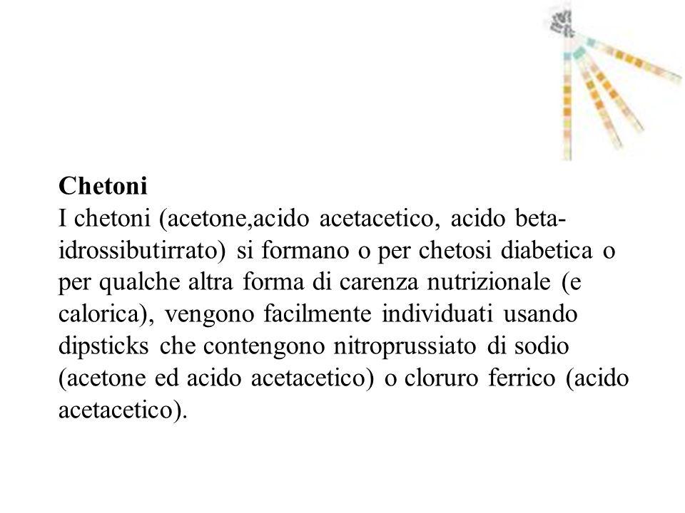 Chetoni