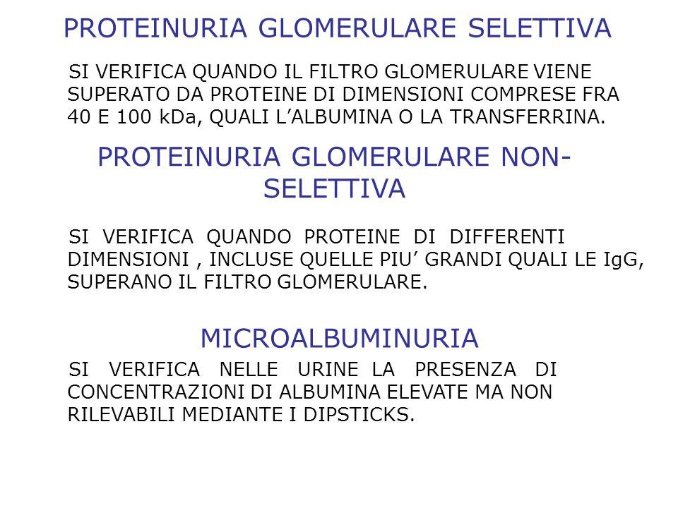 PROTEINURIA GLOMERULARE SELETTIVA