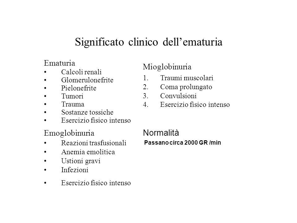 Significato clinico dell'ematuria