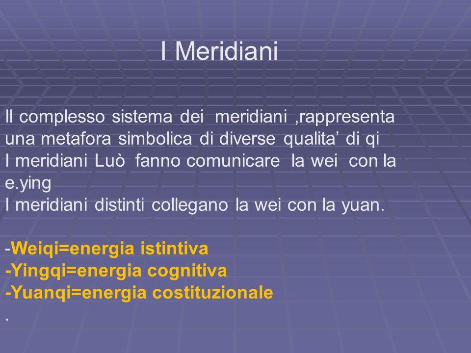 I Meridiani Il complesso sistema dei meridiani ,rappresenta una metafora simbolica di diverse qualita' di qi.