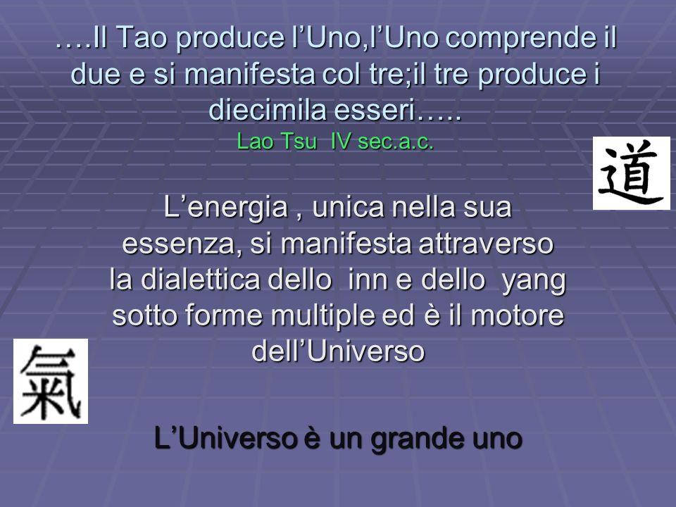 L'Universo è un grande uno