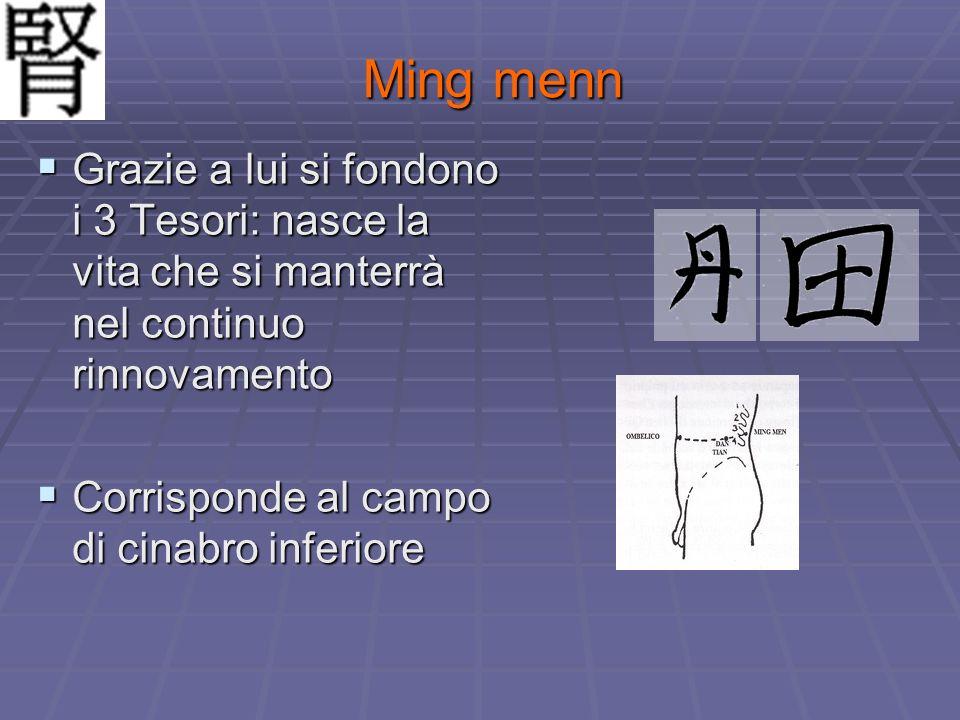 Ming menn Grazie a lui si fondono i 3 Tesori: nasce la vita che si manterrà nel continuo rinnovamento.