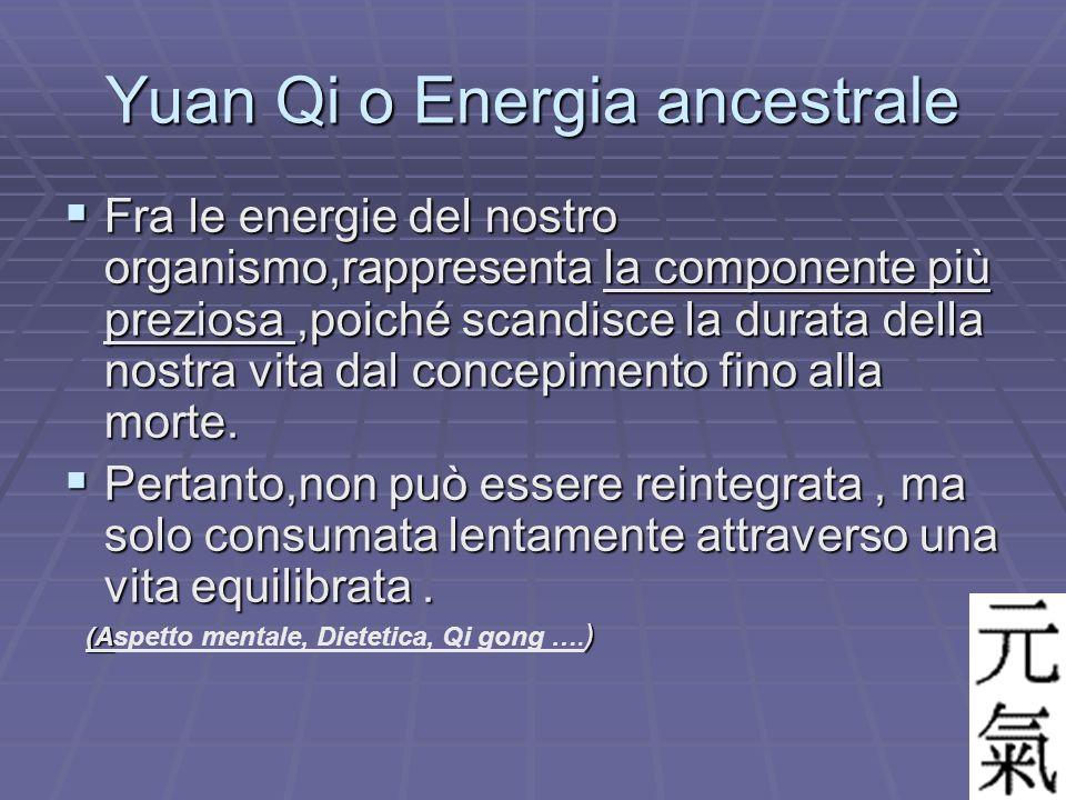 Yuan Qi o Energia ancestrale