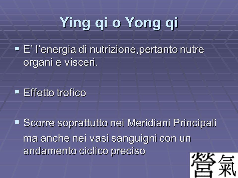 Ying qi o Yong qi E' l'energia di nutrizione,pertanto nutre organi e visceri. Effetto trofico. Scorre soprattutto nei Meridiani Principali.