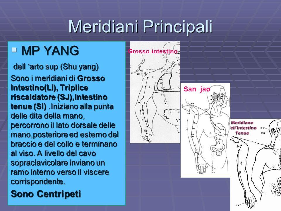 Meridiani Principali MP YANG dell 'arto sup (Shu yang) Sono Centripeti