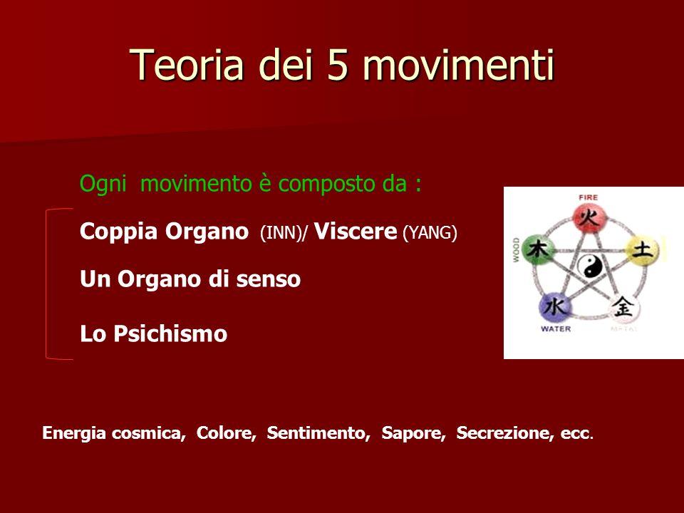 Teoria dei 5 movimenti Ogni movimento è composto da :