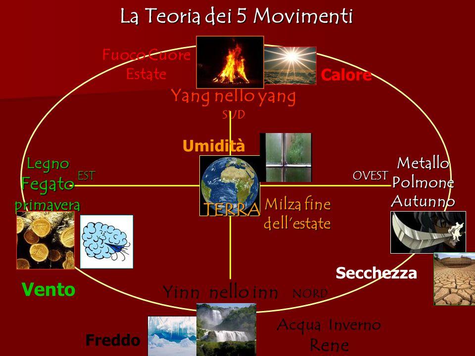 La Teoria dei 5 Movimenti