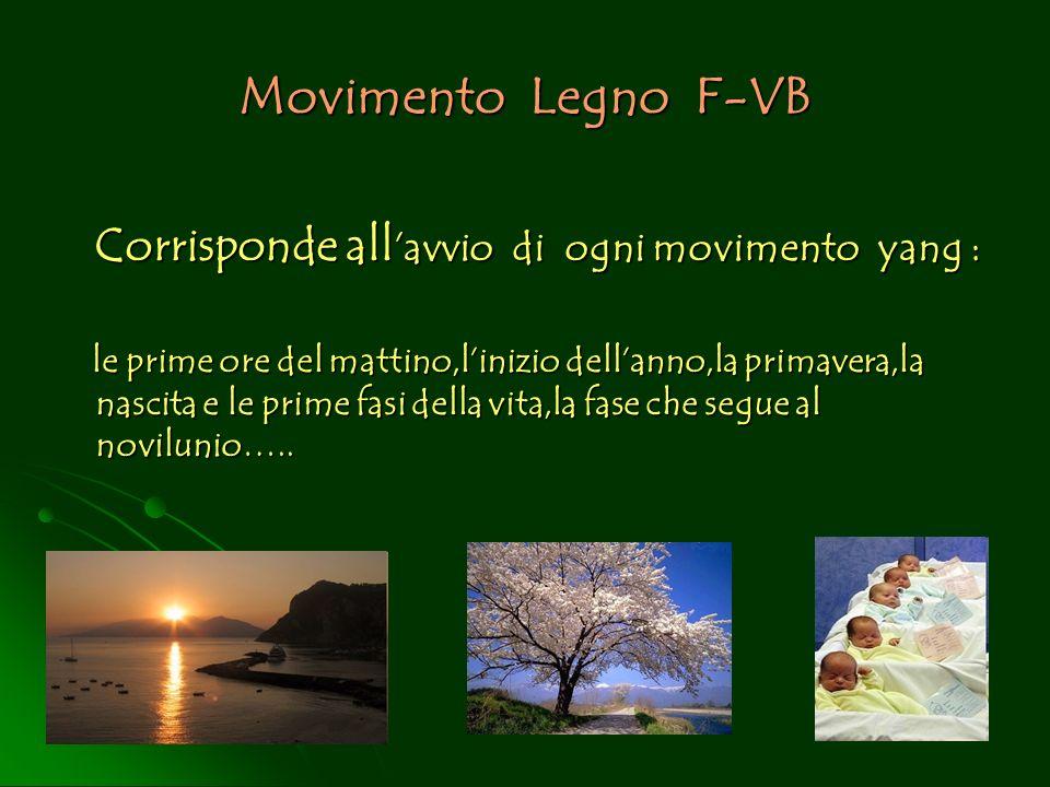 Movimento Legno F-VB Corrisponde all'avvio di ogni movimento yang :