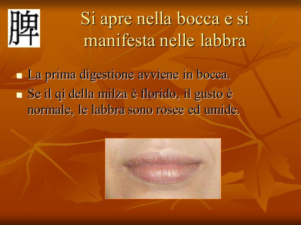 Si apre nella bocca e si manifesta nelle labbra