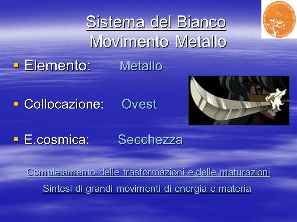Sistema del Bianco Movimento Metallo