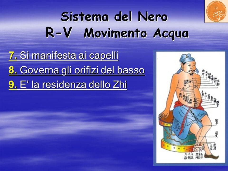 Sistema del Nero R-V Movimento Acqua