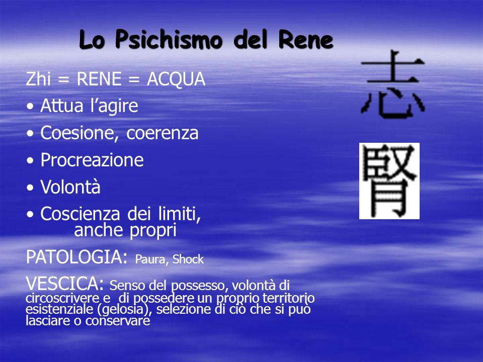 Lo Psichismo del Rene Zhi = RENE = ACQUA Attua l'agire