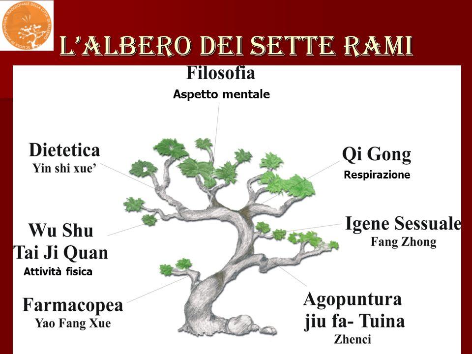 L'ALBERO DEI SETTE RAMI