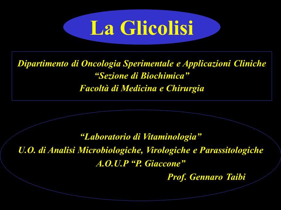 La Glicolisi Dipartimento di Oncologia Sperimentale e Applicazioni Cliniche. Sezione di Biochimica
