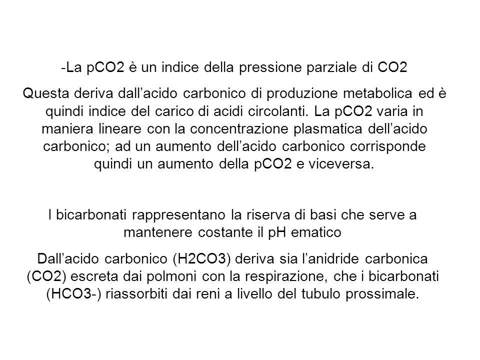 La pCO2 è un indice della pressione parziale di CO2