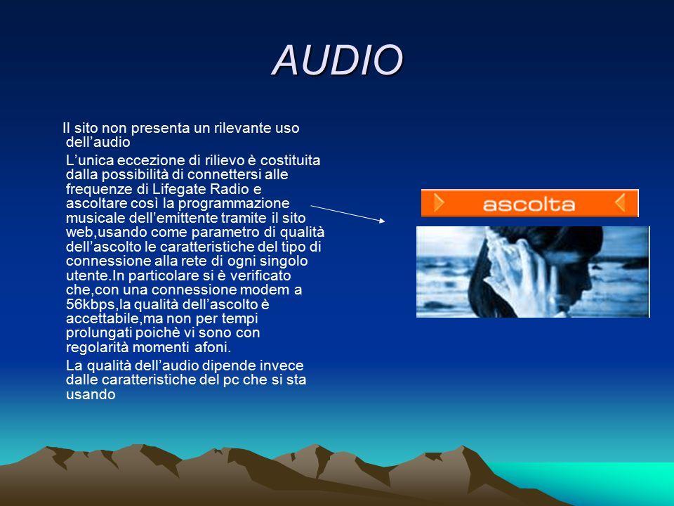 AUDIO Il sito non presenta un rilevante uso dell'audio.