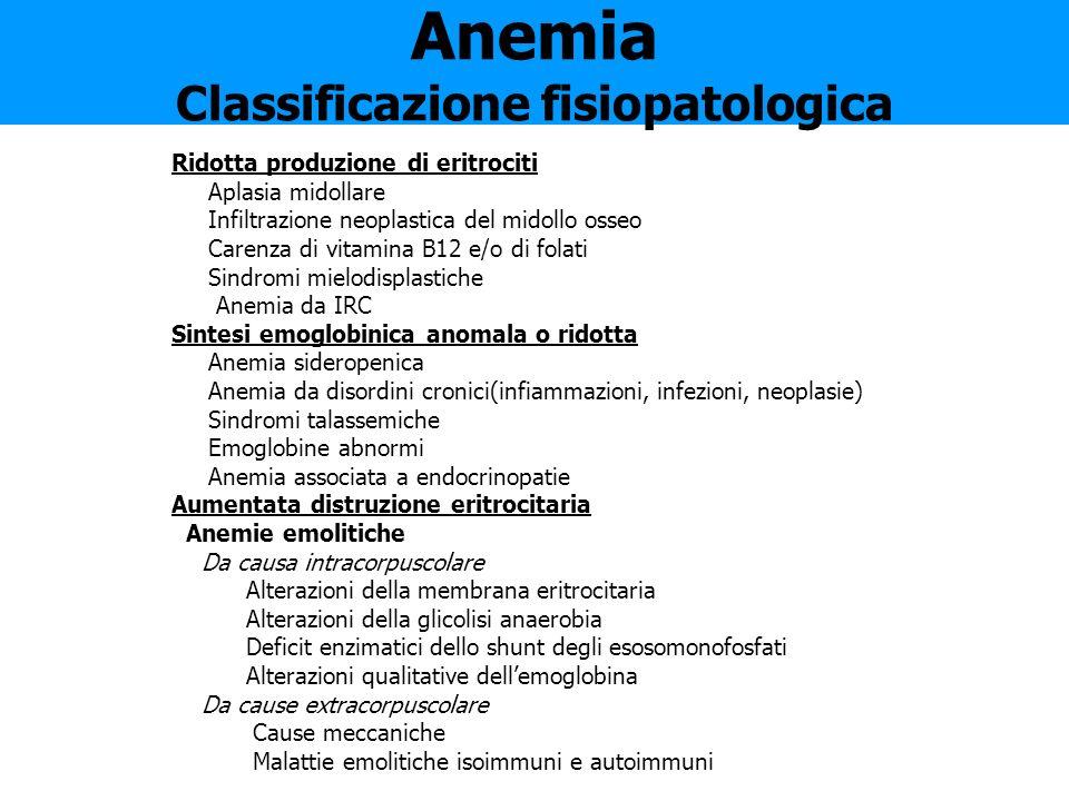 Anemia Classificazione fisiopatologica