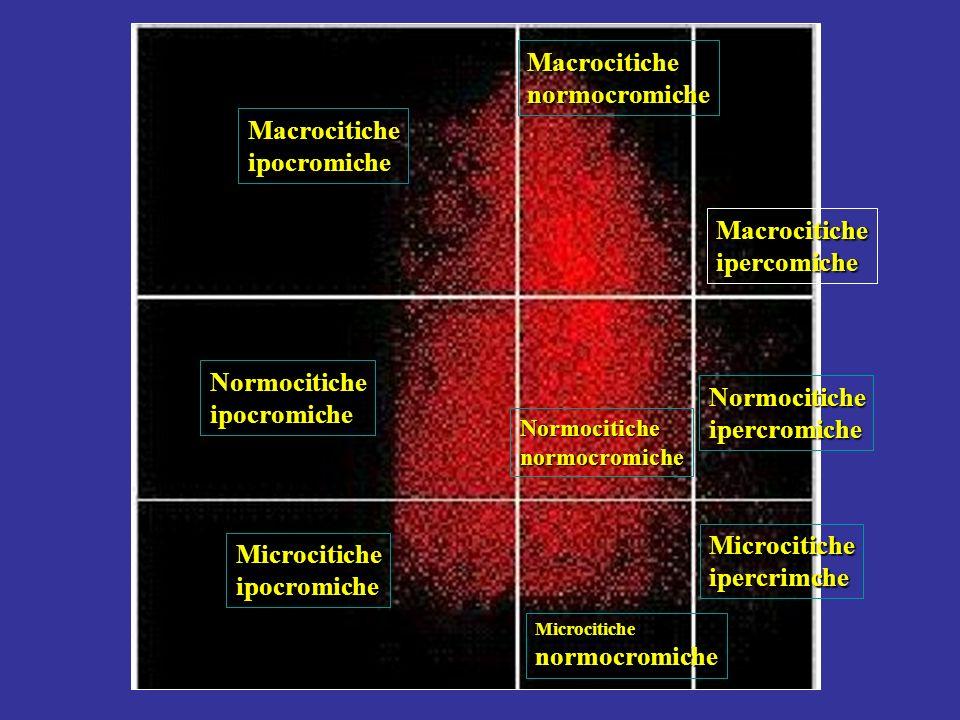 normocromiche Macrocitiche ipocromiche ipercomiche Normocitiche