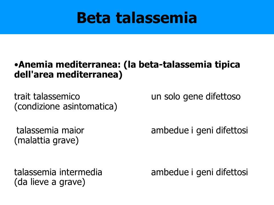 Beta talassemia Anemia mediterranea: (la beta-talassemia tipica dell area mediterranea)