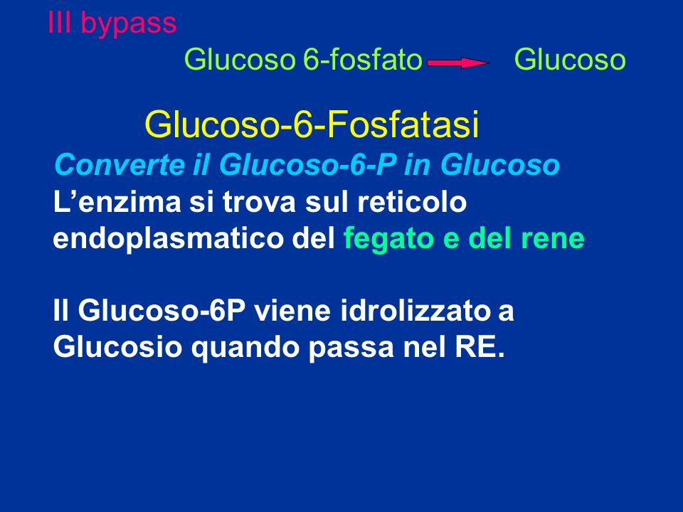 Glucoso-6-Fosfatasi III bypass Glucoso 6-fosfato Glucoso