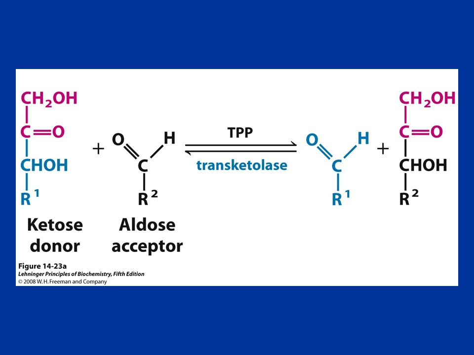 FIGURE 14-23a The first reaction catalyzed by transketolase