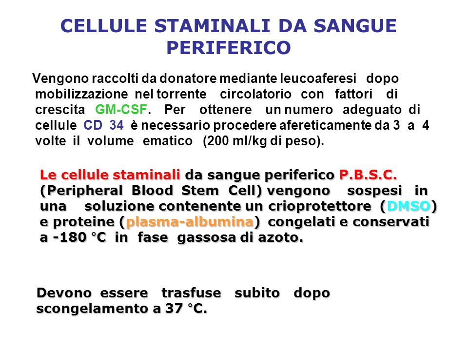 CELLULE STAMINALI DA SANGUE PERIFERICO