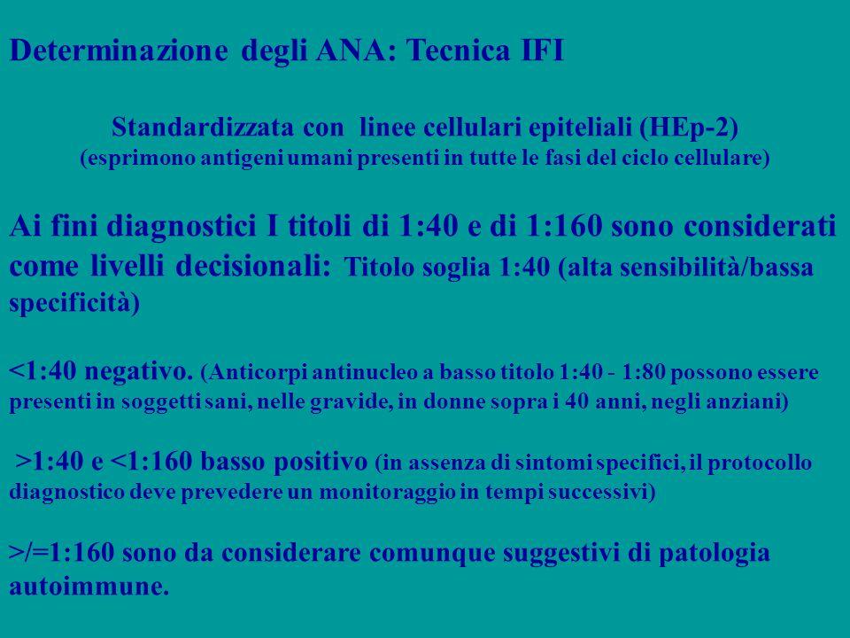 Standardizzata con linee cellulari epiteliali (HEp-2)
