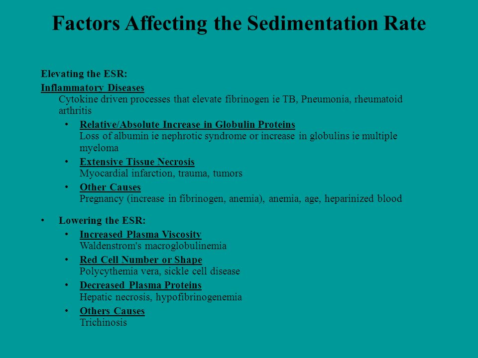 Factors Affecting the Sedimentation Rate