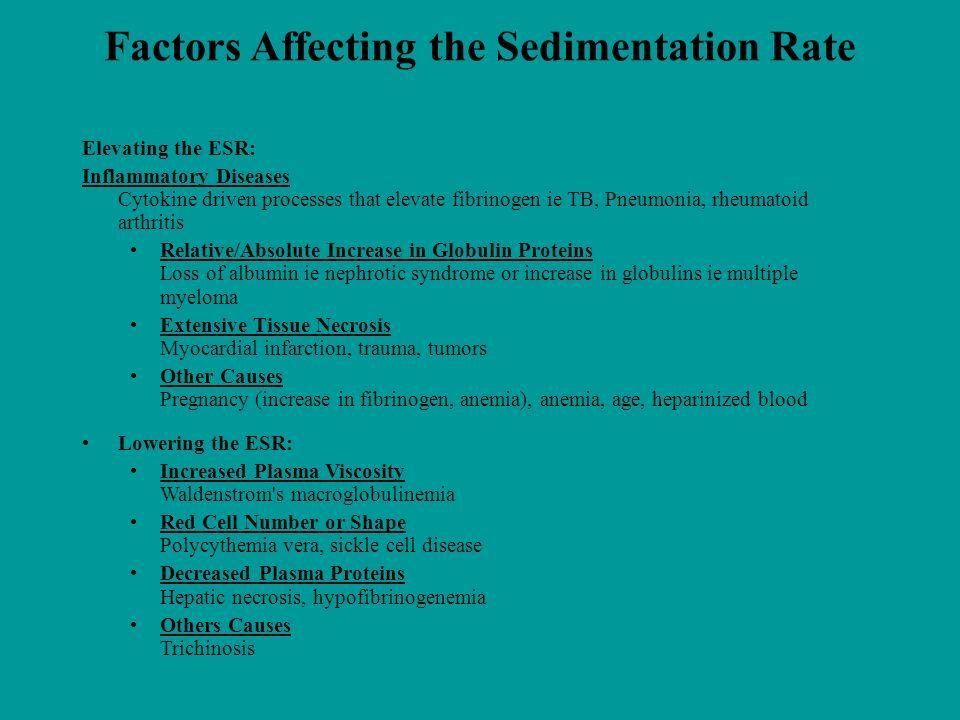 Factors Affecting the Sedimentation Rate