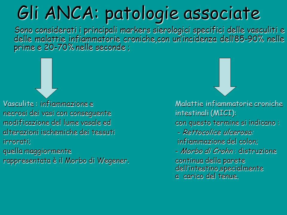 Gli ANCA: patologie associate