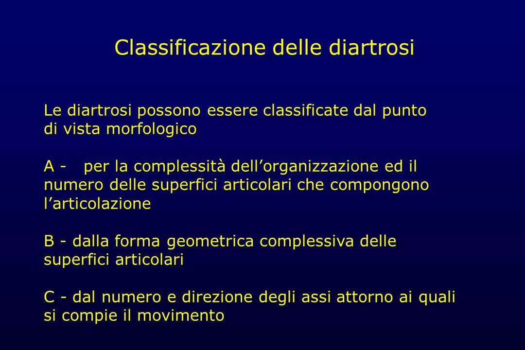 Classificazione delle diartrosi