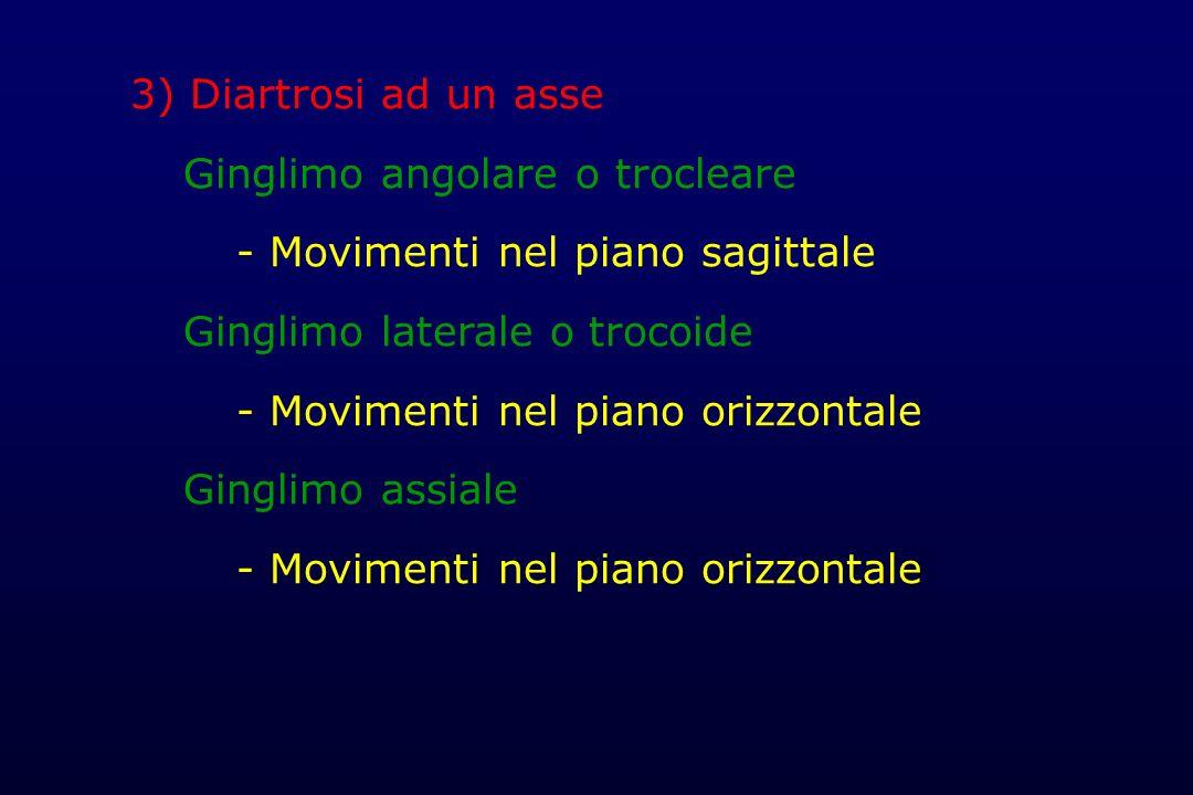 3) Diartrosi ad un asse Ginglimo angolare o trocleare. - Movimenti nel piano sagittale. Ginglimo laterale o trocoide.