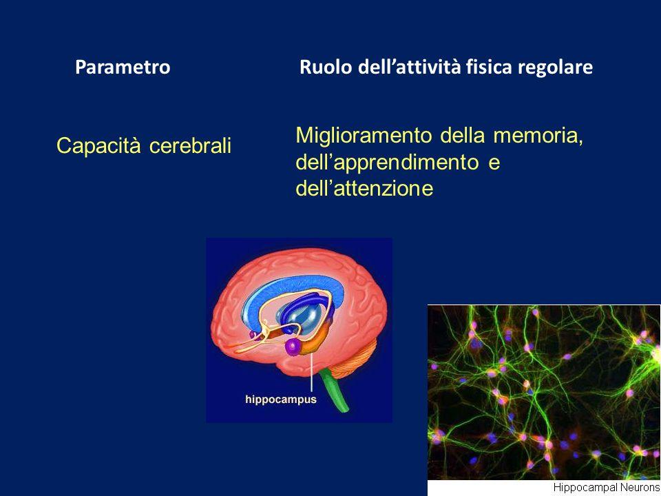 Miglioramento della memoria, dell'apprendimento e dell'attenzione